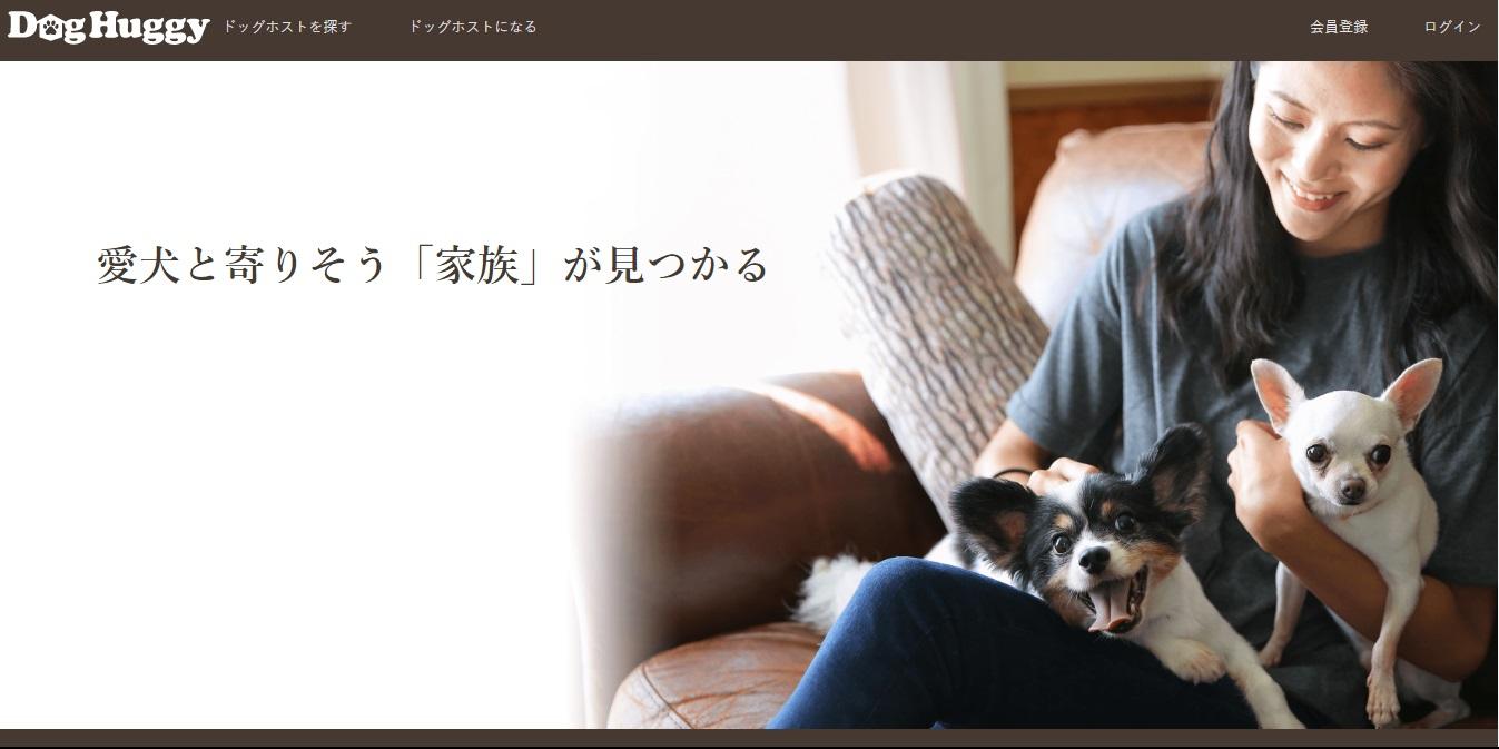 13_doghuggy